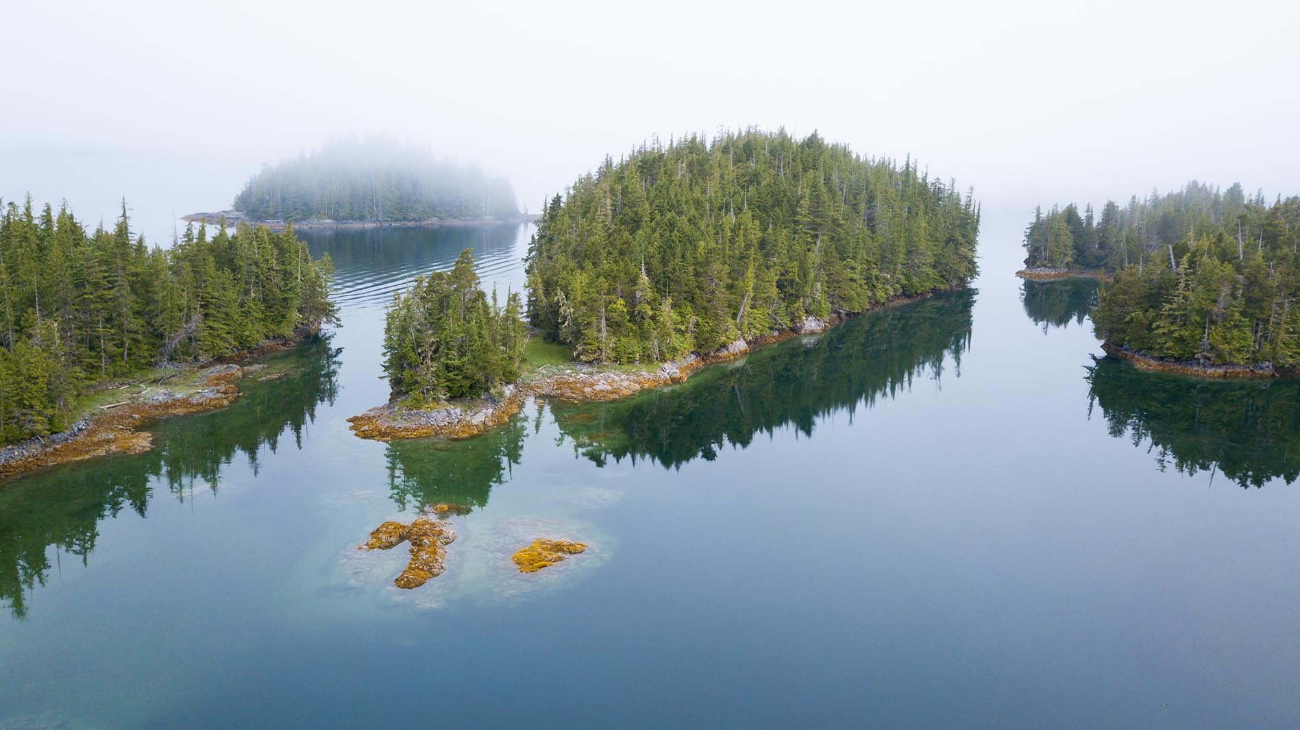 Great Bear Rainforest - Kanada