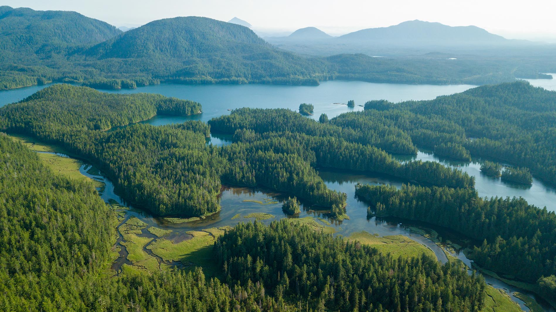 Kanada Great Bear Rainforest